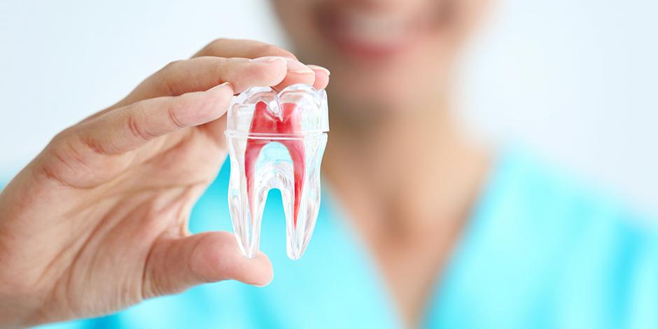 umios%20bukles%20odontologas.jpg